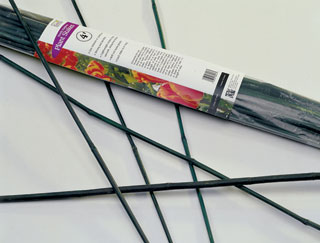 2' Green Bamboo Stake, Case of 500