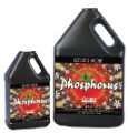 Nature's Nectar Phosphorus Quart image 1