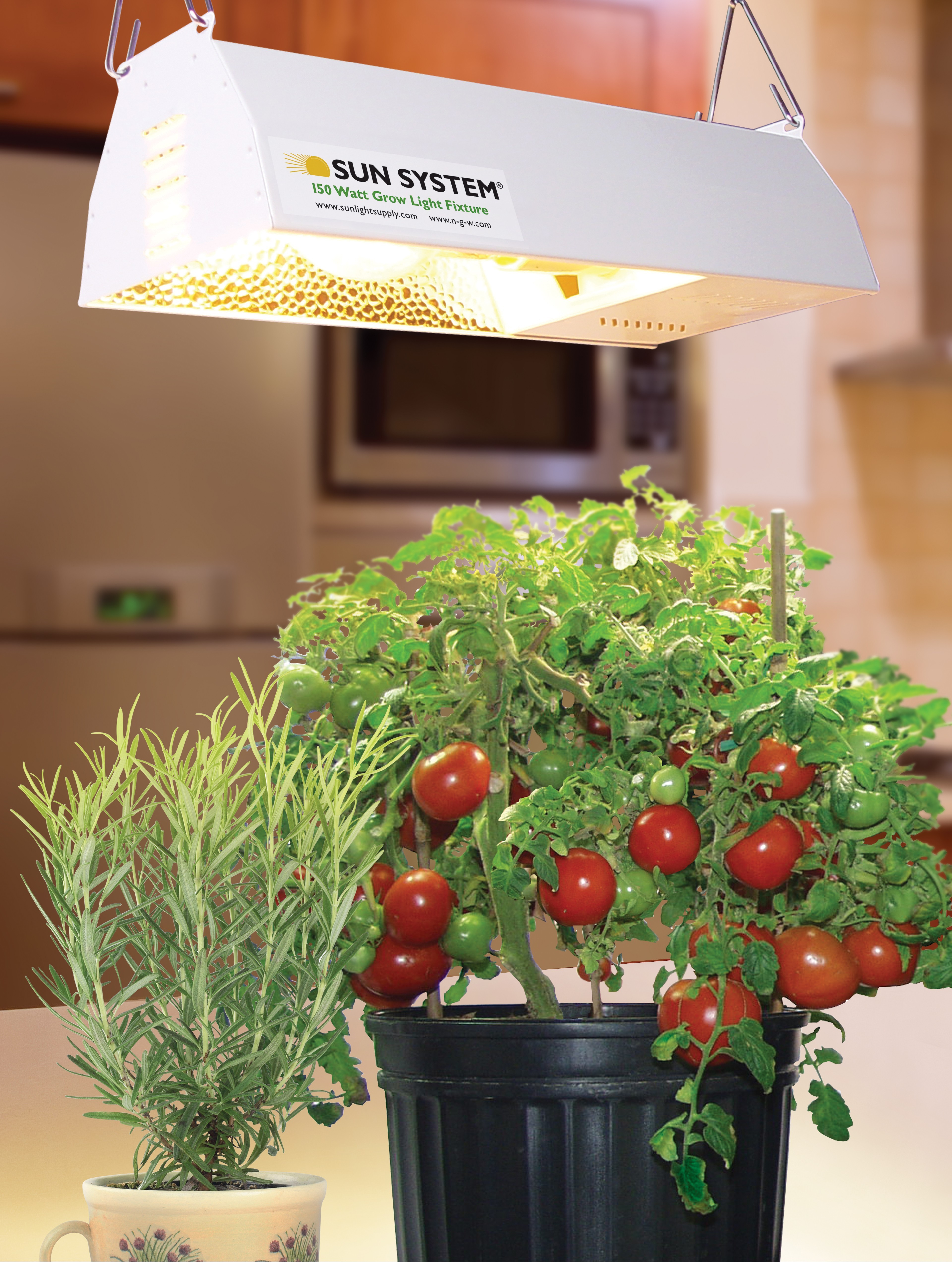 sodium gardening to lights grower use chosen their indoors roses blog hps grow category light a lighting pressure atlantis tips has closet hydroponics rose high picture