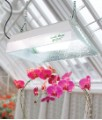 Sun System Garden Bright Fluorescent Grow Light image 2
