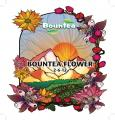 Bountea Flower, 1 gal image 1