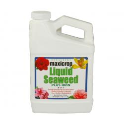 Maxicrop Liquid Seaweed Plus Iron, 1 qt