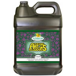 Awesome Blossoms 10 Liters