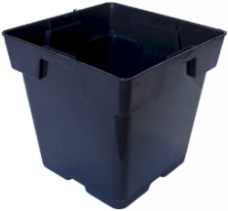 "Black Square Pot (Jumbo Square) 5.5"" pack of 20"