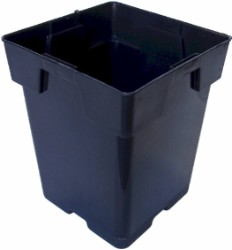 "Black Square Pot (Jumbo Senior) 5.5"" case of 200"