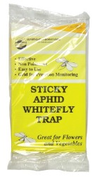 Sticky Aphid And Whitefly Trap 5 Pack