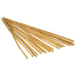 GROW!T 2' Bamboo Stakes, Natural, pack of 25