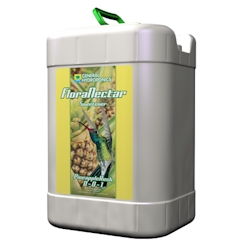 GH Flora Nectar Pineapple Rush 6 Gallon