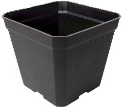 Injection Molded Square 3.5 inch Pot case of 800