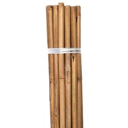Bond Natural Bamboo Stake 6 Foot 6 Pack