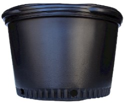 Blow Molded Nursery Pot #10 pack of 25