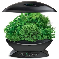 AeroGarden 7 w/Gourmet Herb & Grow Anything Kit