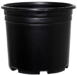 Pro Cal Thermoformed Nursery Pot #3 Squat pack of 25