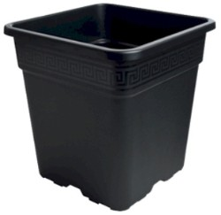 Black Square Pot Half Gallon