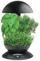 AeroGarden 3 Black w/Gourmet Herb Seed Kit - A Hydrofarm Exclusive!