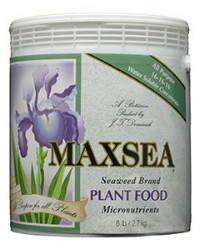 Maxsea All Purpose Plant Food (16-16-16) 6 Lb