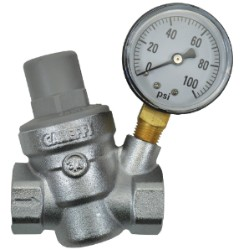 Dosatron Pressure Regulator w/ Gauge - 3/4 in (FPT x FPT)