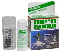 Dip'N Grow Rooting Solution 2 oz (12/Cs)