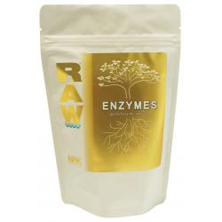 Raw Enzymes 2 oz