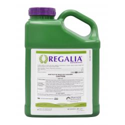 Marrone Bio Innovations Regalia 2.5 Gallon