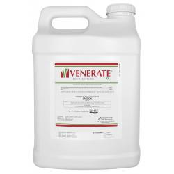 Marrone Bio Innovations Venerate XC Gallon