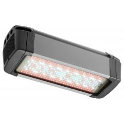 Osram HL300 Grow White LED Horticulture Luminaire - 600 Watt