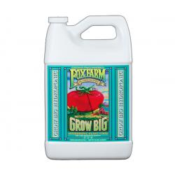 FoxFarm Grow Big Hydro® Liquid Concentrate, 1 gal