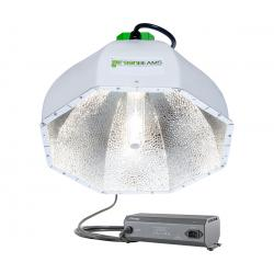 Greenbeams CMh Reflector w/Phantom CMh Ballast & 3100K Lamp
