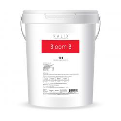 Kalix Bloom B, 5 gal (liquid)