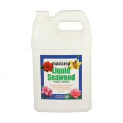 Maxicrop Liquid Seaweed Plus Iron, 1 gal