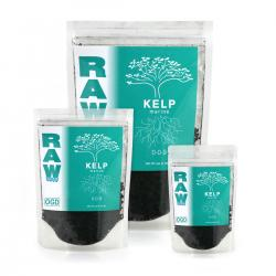 RAW Kelp, 8 oz
