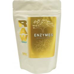 RAW Enzymes, 2 oz