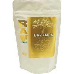 RAW Enzymes, 8 oz