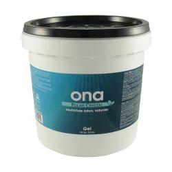 Ona Gel, Polar Crystal, 4 L Pail