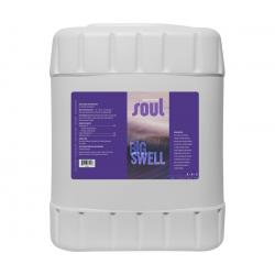 Soul Big Swell, 5 gal