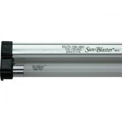 SunBlaster T5HO 39W 6400K Lighting Kit, 3'