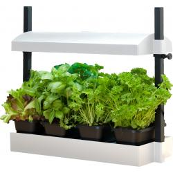 Micro Grow Light Garden, White