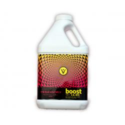 Vegamatrix Boost, 1 qt