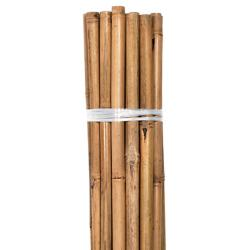 Grower's Edge Natural Bamboo 10 ft Bulk (50/Pack)