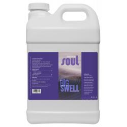 Soul Big Swell 2.5 Gallon
